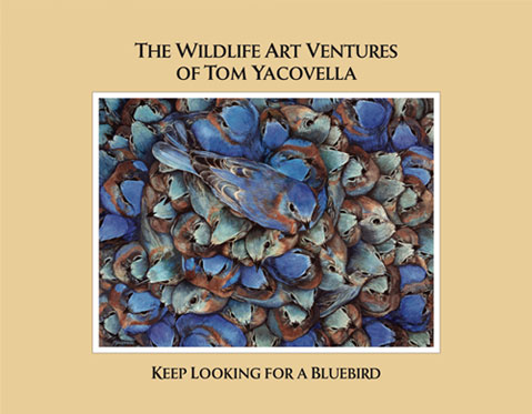 The Wildlife Art Ventures of Tom Yacovella